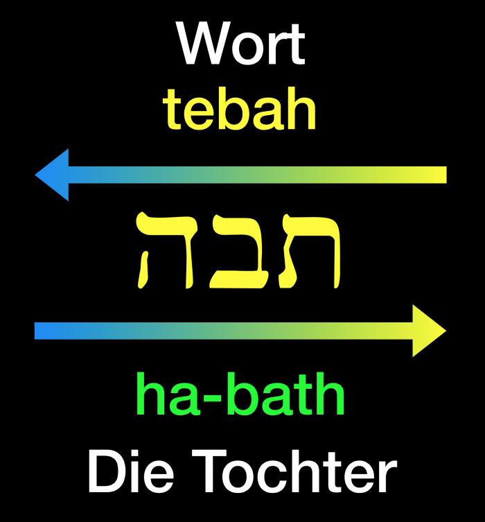 Hebräische Schreibweise des Wortes tebah und in seiner Umkehrung zu ha-bath.