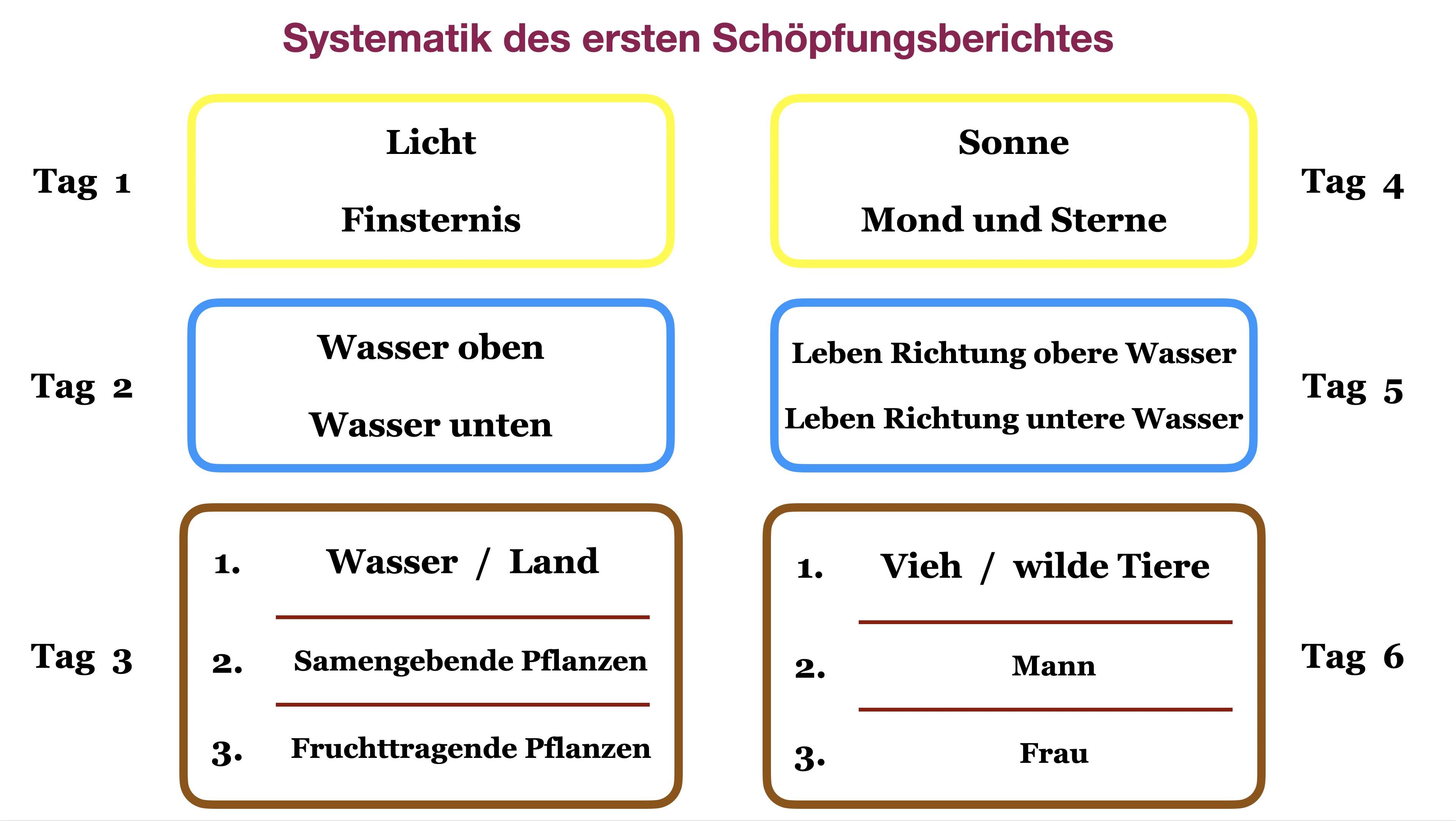 Systematik Genesis